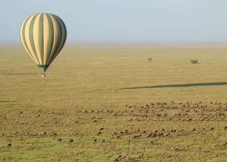 New :  Baloon safari at Ruaha National Park